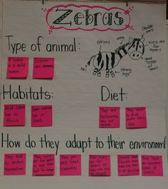 Like this type of chart to study animals  Mrs. Jump's Class blog spot has wonderful ideas! Check out her chitchat ideas for morning message