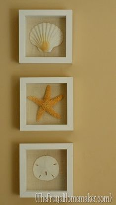 Beach inspired art {Sea Shell art} - The Frugal Homemaker
