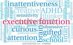 """In the next few articles I would like to demystify what Executive Functioning is for women with ADHD. After you are done reading my series on EF, I want you to walk about thinking """"Wow, I now have a pretty good grasp of Executive Functions, I have a better understanding of why you have difficulty … Mind Diet, Self Monitoring, Obsessive Compulsive Disorder, I Series, Executive Functioning, Learning Disabilities, Pretty Good, Adhd, Problem Solving"""