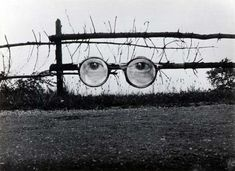 There are but two elements mixed here, but it still feels powerful. It gives an eerie sense of being watched. The greyscale adds to this sense. The sharp-looking, scattered twigs and such along the fence also add an unhappy air. It reminds me of the Great Gatsby (the eyes that watched over them on a billboard).
