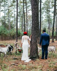 Thea and Rachit's Two-Day Hindu and Jewish Wedding Celebration Morrisville North Carolina, Milk Quotes, Dairy Free Overnight Oats, Dairy Free Chocolate, Martha Stewart Weddings, Plan Your Wedding, Farm Wedding, Celebrity Weddings, Free Food