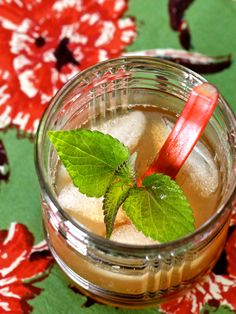 Garden Old Fashioned Cocktail - bourbon, rhubarb-anise hyssop syrup, bitters