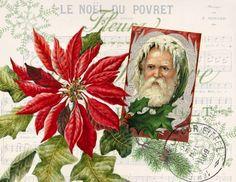 Paper Christmas Poinsettia Print