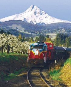Mount Hood Railroad is a century-old, short line railroad offering scenic passenger excursions through Northern Oregon. Book your scenic train ride today! Oregon Road Trip, State Of Oregon, Oregon Trail, Oregon Coast, Oregon Vacation, Oregon Usa, Portland Oregon, Places To Travel, Places To See
