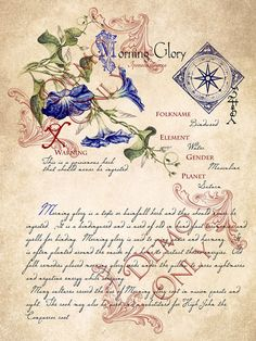 Grimoire, Spell, Herbs and Book of Shadows Pages, Practical Magic; The Cackling Cauldron ~ Book of Shadows 4 page set Wiccan Spells, Love Spells, Magick, Witchcraft, Magic Spells, Magic Herbs, Herbal Magic, Witch Herbs, Witches Cauldron