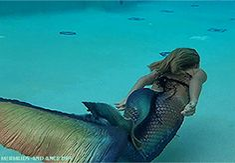 Little Mermaid Erg Mooie 26658