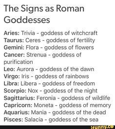 tzq, zodiac, zodiacs