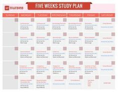 Five Weeks Study Plan for the NCLEX, check out the details here. Nursing Exam, Nursing School Tips, Nursing Notes, Nursing Tips, Pharmacology Nursing, Nursing Career, Nursing Schools, Study Plan Template, Study Plans