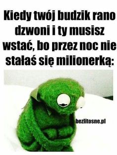 Funny Mems, Kermit, The Funny, Lol, Memes, Captions, Poland, Sisters, Comics