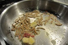 How to Prepare Mealworms :: For more recipes: https://www.pinterest.com/ediblebugfarm/cooking-with-edible-bugs/