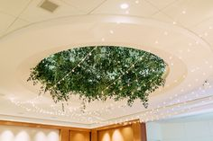 Jackson Vine hung beautifully over a dance floor for a wedding reception with our clear Italian lights. Something so simple can add so much character to a room! Photo Credit: Kelly Ginn Photography