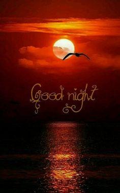 Beautiful Good Night Quotes, Good Night Gif, Good Night Image, Sweet Night, Good Night Sweet Dreams, Blessed Night, Good Morning Roses, Lakshmi Images, Radha Krishna Wallpaper
