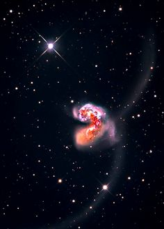 The Antennae, a pair of interacting galaxies, NGC 4038/NGC 4039 or Caldwell 60/61, are currently going through a phase of starburst.