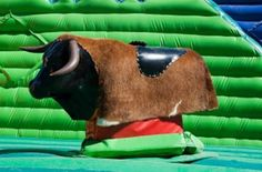 "Mechanical Bull - a fun idea for your Western theme party. A big-ticket item, obviously. But wow, if you can afford the rental your guests will never forget it. Imagine Ned from Accounting or your aunt Dorothy holding on for dear life. We say, ""Money well spent."""