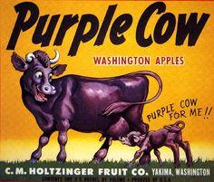 Yakima Washington Purple Cow Apple Fruit Crate