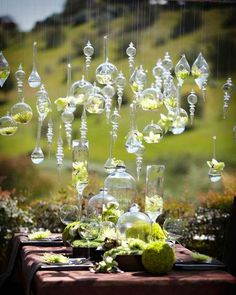 Hanging crystals and globe ideas for the willow tree