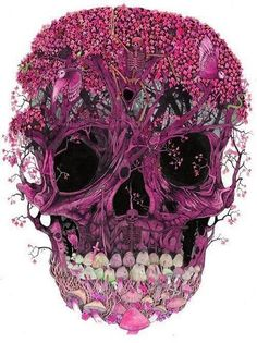 Skull Art in Pink & Black - Who Is The Artist??