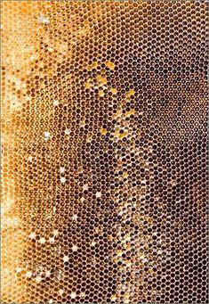 Golden glowing honeycomb