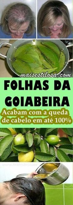 Guava Leaves Can Stop Your Hair loss and Make It Grow Like Crazy - NZ Holistic Health Home Remedies For Hair, Hair Loss Remedies, Guava Leaves, Mrs Hudson, Stop Hair Loss, Tips Belleza, Grow Hair, Wellness Tips, Natural Medicine