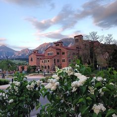 Good morning from #cuboulder. Here's to a great day!