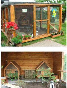 Rabbit Shed, Rabbit Farm, Rabbit Life, Backyard Chicken Coop Plans, Backyard Plan, Chickens Backyard, Rabbit Enclosure, Outdoor Cat Enclosure, Bunny Cages