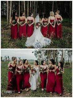 Darren & Robyn Bridesmaid Dresses, Wedding Dresses, Wedding Photos, Fashion, Bridesmade Dresses, Bride Dresses, Marriage Pictures, Moda, Bridal Gowns