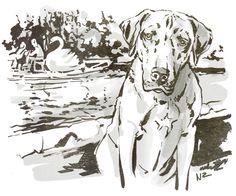 Oscar and the swan boats - illustration by Natalya Zahn