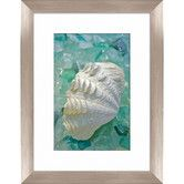 Found it at Wayfair - Sea Glass and Shell Framed Photographic Print
