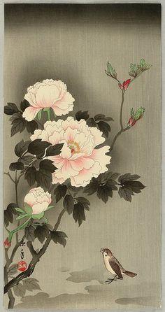 Tattoo Ideas & Inspiration - Japanese Art | Imao Keinen - Sparrow and Peonies, 1930s, Japan | #Japanese #Art #Sparrow #Peony #Flowers