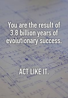 You are the result of 3.8 billion years of evolutionary success.    ACT LIKE IT.