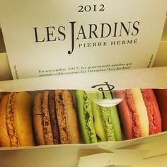 My stash of #macarons from #PierreHerme #Paris #France .@Rita Goh (Rita Goh) s Instagram photos   Webstagram - the best Instagram viewer