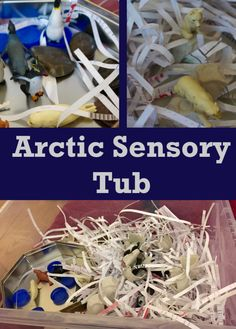 This is easy to set up and fun sensory educational play for toddlers, pre-schoolers and beyond Sensory Tubs, Arctic Animals, Toddlers, Blogging, January, Activities, Play, Fun, Collection