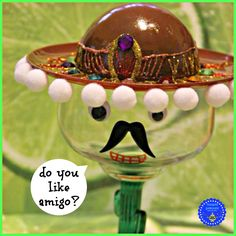 hoopla palooza: cinco de mayo sombrero men glasses