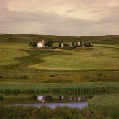 Iceland - I so wanna live there!