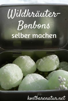 It's so easy to make cold sweets with wild herbs yourself Desserts With Biscuits, Herbs For Health, Le Diner, Healthy Dessert Recipes, Alternative Medicine, Detox Drinks, Natural Remedies, Healthy Life, Herbalism