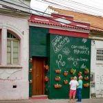 Horta orgânica em tapume de obra vira atração em Florianópolis