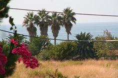 http://ankalipowska.blogspot.com/2015/10/sicilia.html