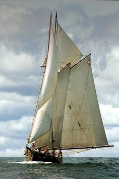 Ernestina Photograph by Fred LeBlanc - Ernestina Fine Art Prints and Posters for Sale