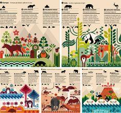 Gorgeous animal infographic by HalfPastTwelve (illustrator/designer Laura Cattaneo). Modern Graphic Design, Graphic Design Typography, Graphic Design Illustration, Graphic Design Inspiration, Illustration Art, Page Layout Design, Map Design, Branding, Illustrations Posters