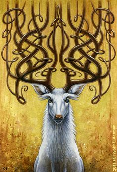 The deer (particularly the doe, females) has the capacity for infinite generosity. Their heart rhythms pulse in soft waves of kindness. Match that graciousness by offering your trust to her. She will reward you by leading you to the most powerful spiritual medicine you can fathom.