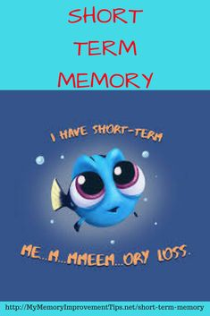 Short term memory, also referred to as primary or active memory, would be the information that were presently alert to or thinking about. The data located within short-term memory emanates from being attentive to sensory memories.