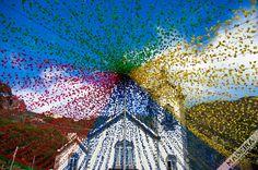 Color burst of an 'Arraial' (traditional regional festivity). Peter Festivities (Festa de São Pedro) Photo location the Church at Ribeira Brava, Madeira Island. Photo by Don Amaro Portugal, Paragliding, Beach Pool, Travel Bugs, Photo Location, Island Life, Time Travel, Cool Photos, Cruise