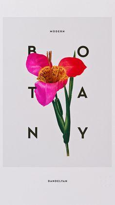 Magpie Studio: Dandelyan – Modern Botany