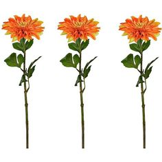 Orange Dahlia Stems, Set of 3 (38 RON) ❤ liked on Polyvore featuring home, home decor, floral decor, filler, orange home accessories, flower home decor, flower stem and orange home decor