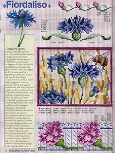Gallery.ru / Фото #46 - Ботаника-цветы - irislena
