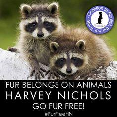 boycott harvey nics..fur belongs on beautiful animals,not ugly people