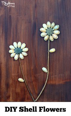 DIY Shell flowers are a simple nature craft for both kids and adults. They make lovely home decor and are the perfect gift for Mother's Day, Christmas, birthday's, and anniversaries! They are the perfect gift for the fourth wedding anniversary which is traditionally flowers.