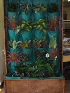 Introducing the new interior vertical wall garden. Go to www.mikriscoop.com to contact us.