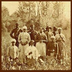 Slaves, ex-slaves, and children of slaves in the American South, 1860 Ancient Aliens, Old Photos, Vintage Photos, Kings & Queens, Berber, Black History Facts, Strange History, Ohio, African Diaspora