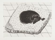 David Hockney, Dog Etching No. from Dog Wall, 1998 Etching, on Somerset paper, with full margins 22 × 29 in × cm David Hockney Prints, David Hockney Artist, David Hockney Paintings, Arte Dachshund, Pop Art Movement, Animal Magic, Rabbit Art, Animal Paintings, Dog Art
